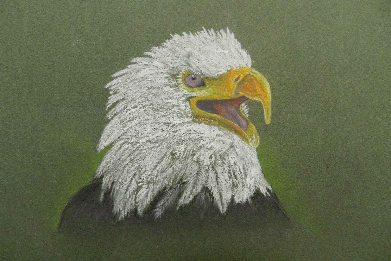EaglePastel-DSCN0309