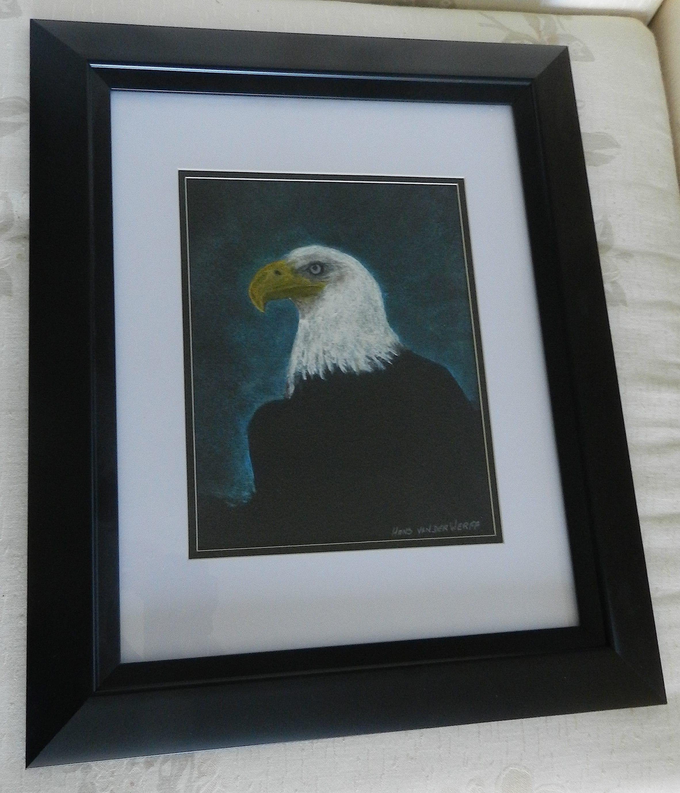 Pastel-Eagle-Framed-DSCN3872