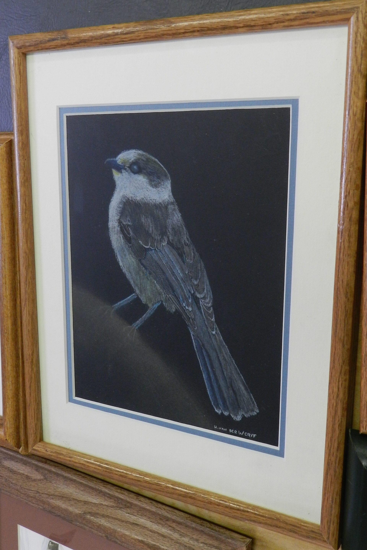 Pastel-blueBird-DSCN1449