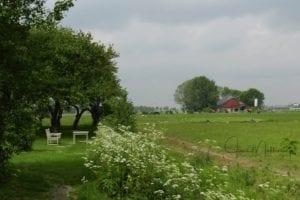 WatermarkedPastoral-Holland