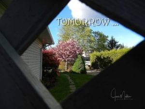 WM-Tomorrow