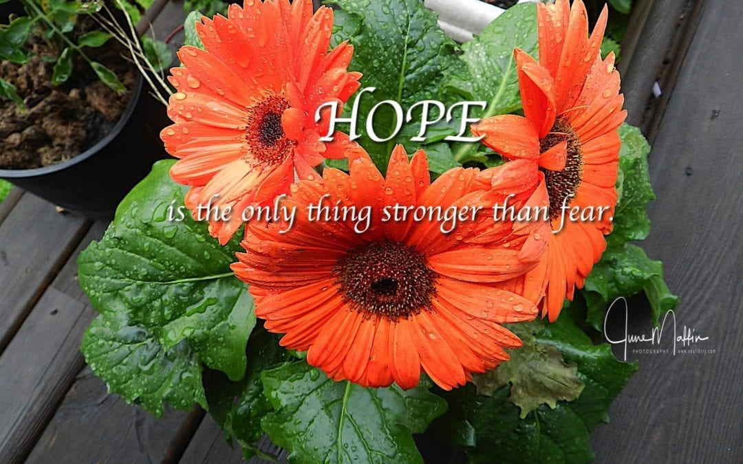 """""""TURNING FEAR INTO HOPE"""""""