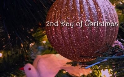 """""""SECOND DAY OF CHRISTMAS"""""""