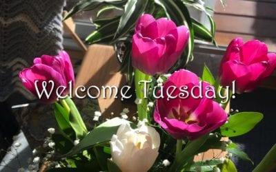 """WELCOME TUESDAY"""