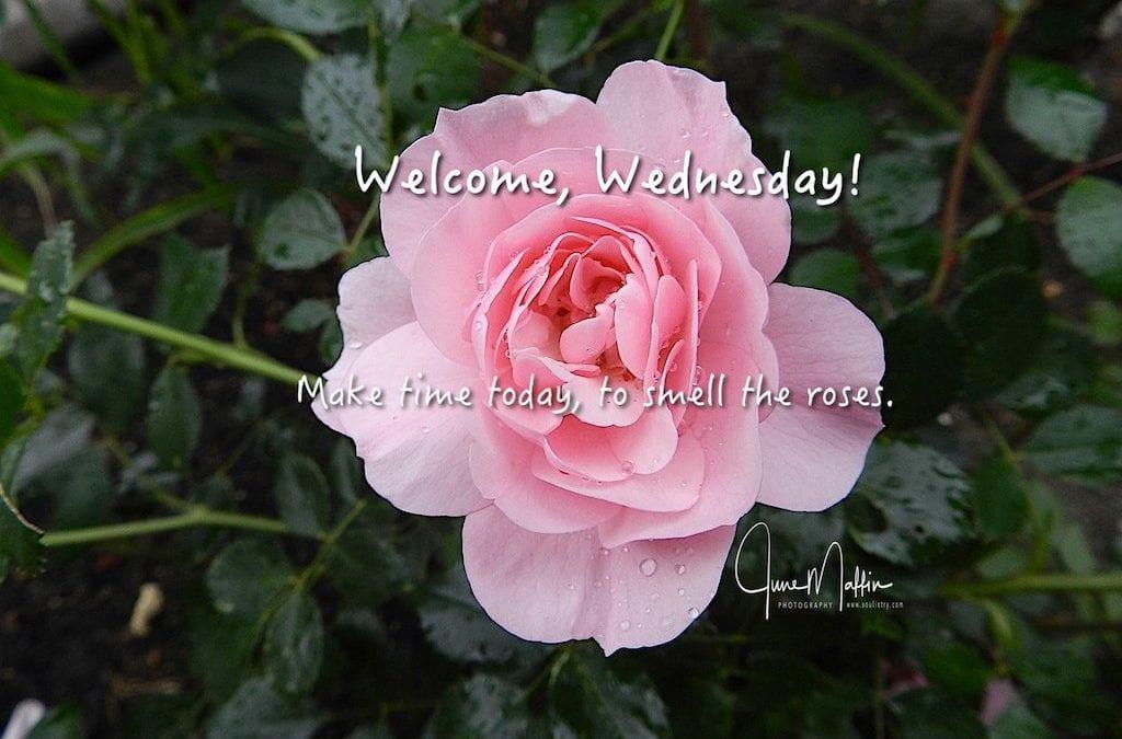 """""""WELCOME WEDNESDAY"""""""
