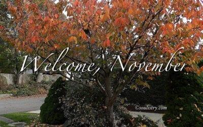 """WELCOME, NOVEMBER"""