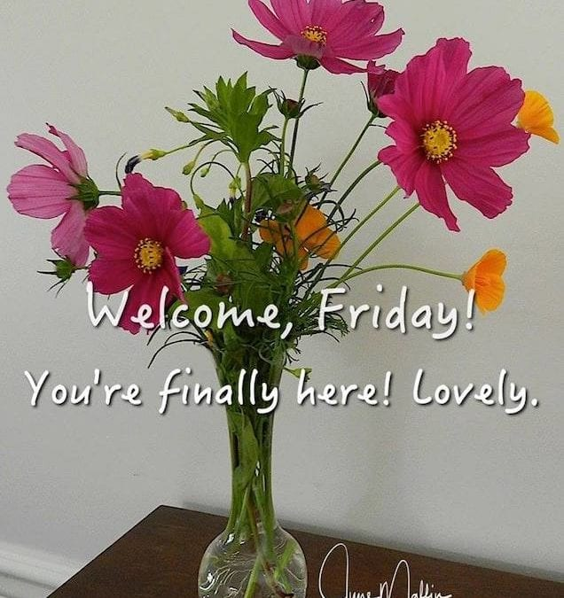 """WELCOME FRIDAY"""